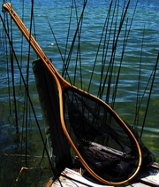 Name: MOBY-LOON--LANDING-NET Filename:3868332.jpg