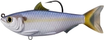 Name: THREADFIN-SHAD-SWIMBAIT Filename:3882990.jpg