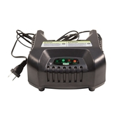 3886367 ION BATTERY CHARGER (1)